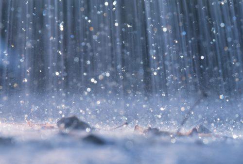 Lunedì 15 luglio chiuso il parco di Villa Mimbelli per allerta pioggia. Chiusa anche la biblioteca d'arte