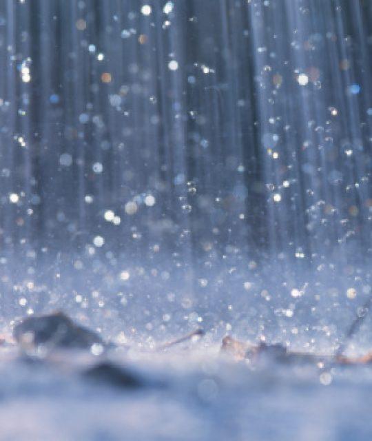 Lunedì 15 luglio chiuso il parco di Villa Mimbelli per allerta pioggia